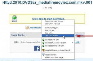 start download, fileserve premium