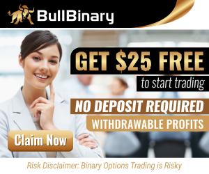 25 dollars from Bullbinary